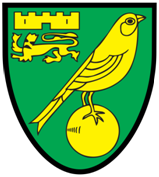 The Canaries FC logo